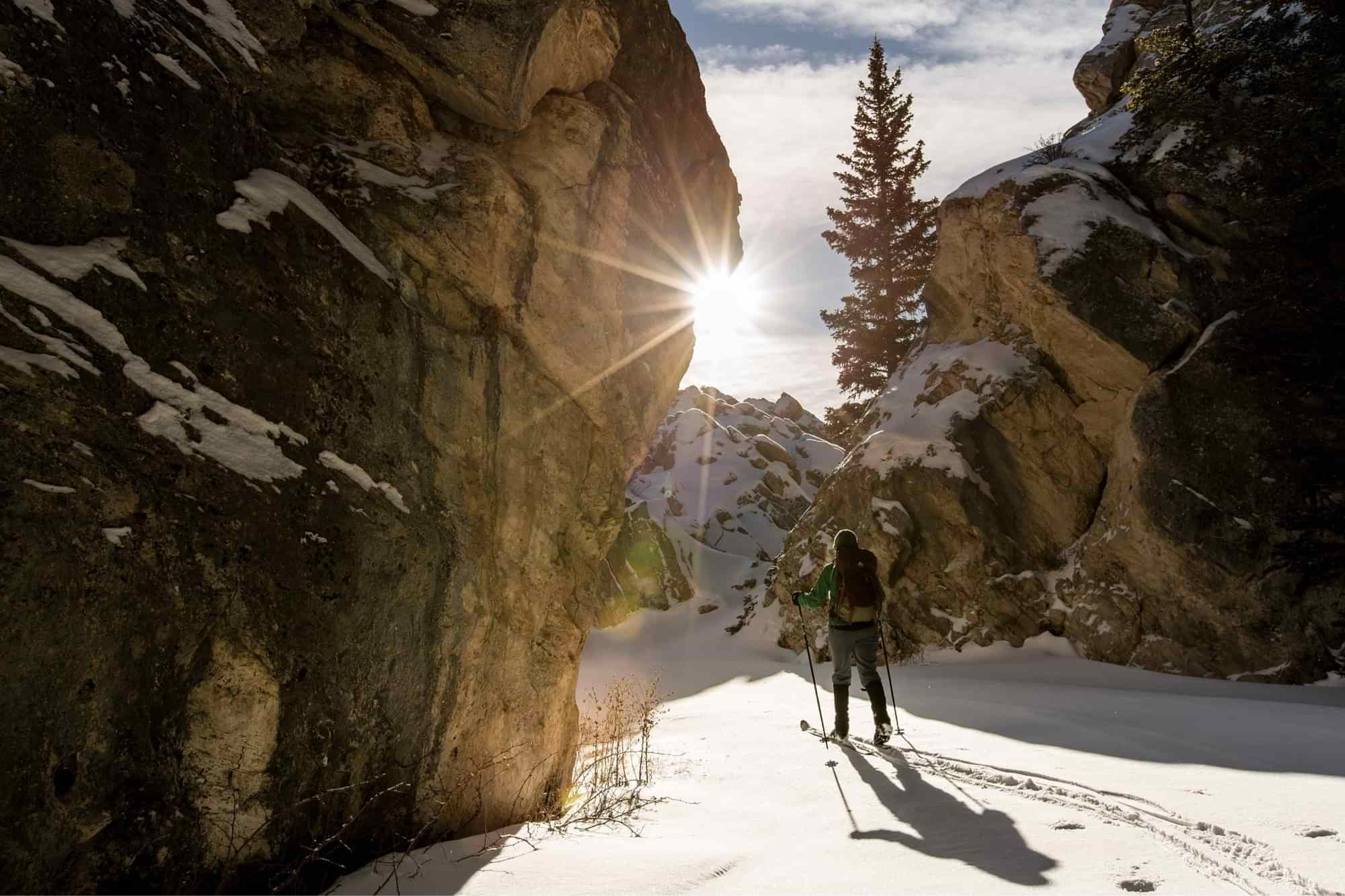 Person cross-country skiing in the backcountry.