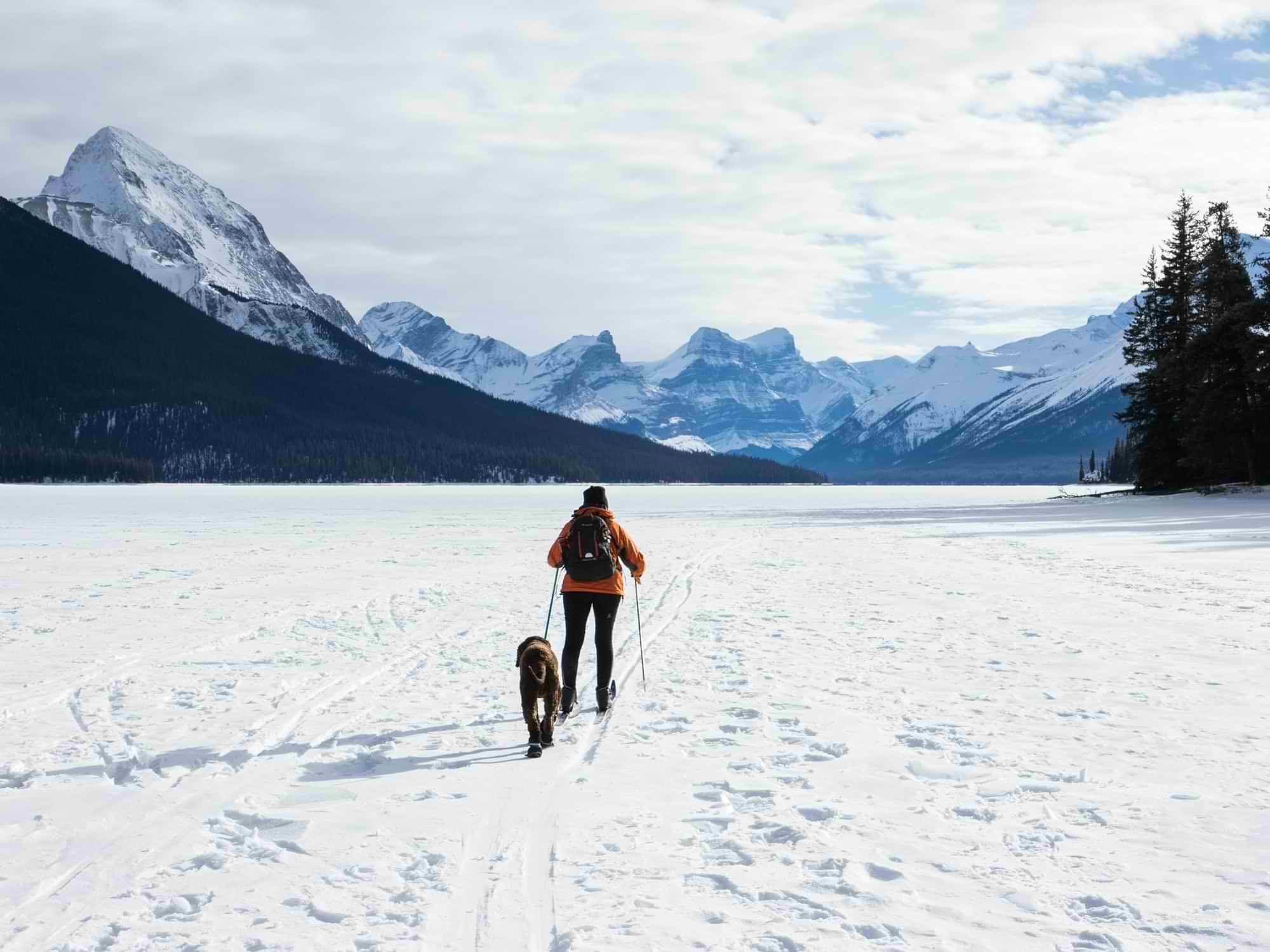 Woman cross-country skiing in the mountains with her dog